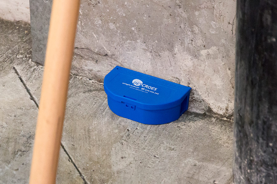 pest control device on the ground